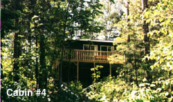 ely resort rental cabins