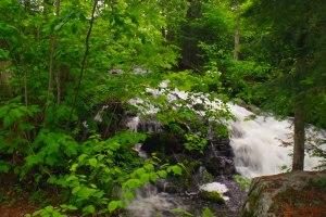 Jasper Creek from Cabin #2