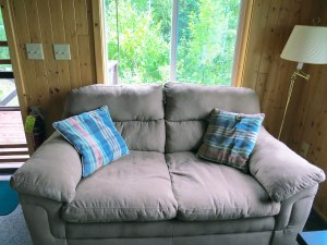 Cabin #5 Loveseat