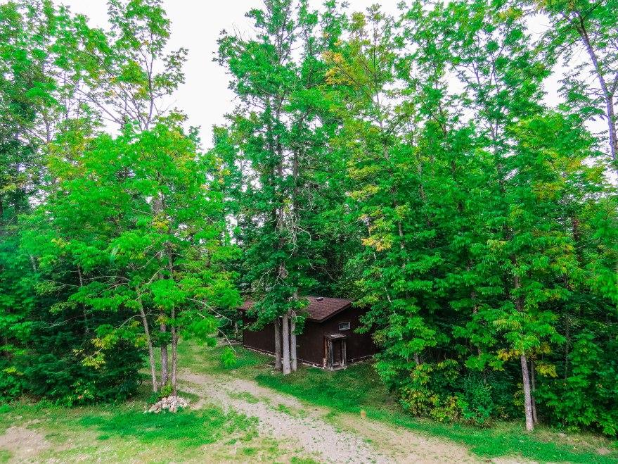 TreeTop Haus View
