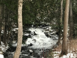 Jasper Creek in April Snow Storm